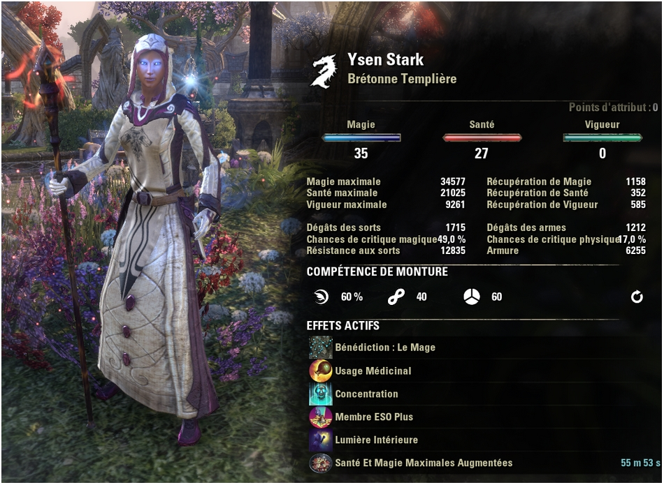Teso Build Chevalier Dragon Dps Magique